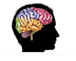 Wechselseitiger Einfluss von Körper, Geist, Psyche und Sozialem
