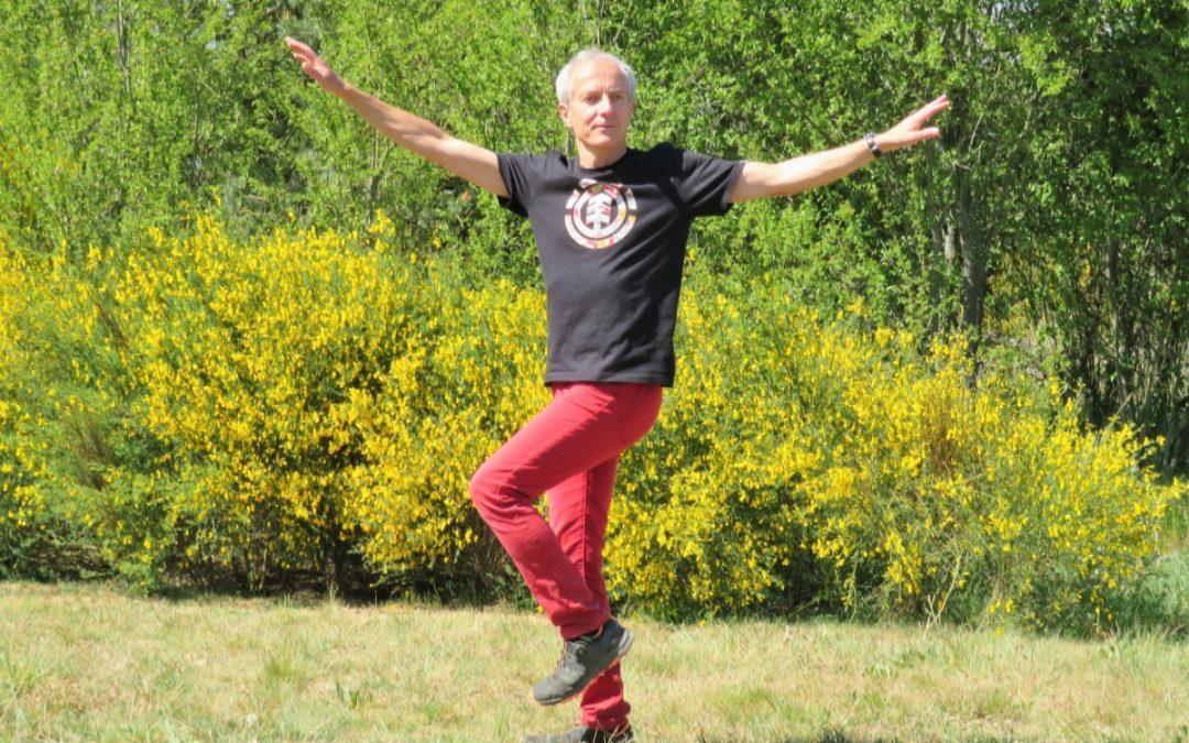 Sonnen-Qigong: Energie und Vitalität, Online-Kurs